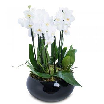 Arranjo no Vaso de Cerâmica Preto